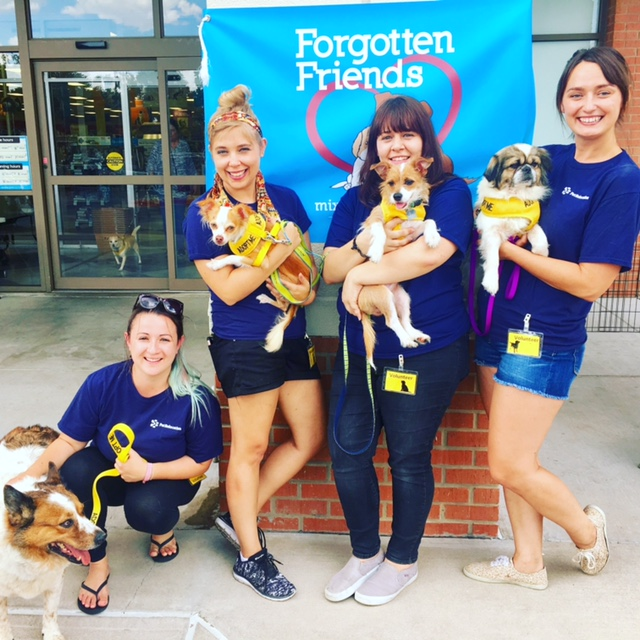 PetRelocation Employees at Forgotten Friends event