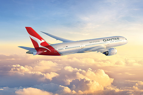 Booking qantas pet travel petrelocation for Best airline to fly dogs