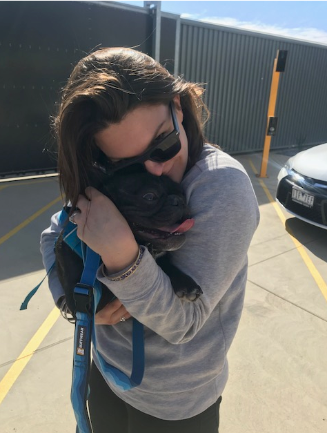 pet reunited with owner in australia