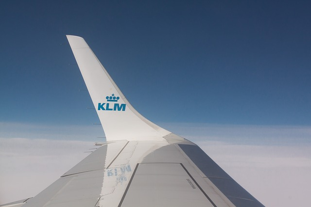 shipping pets internationally on KLM