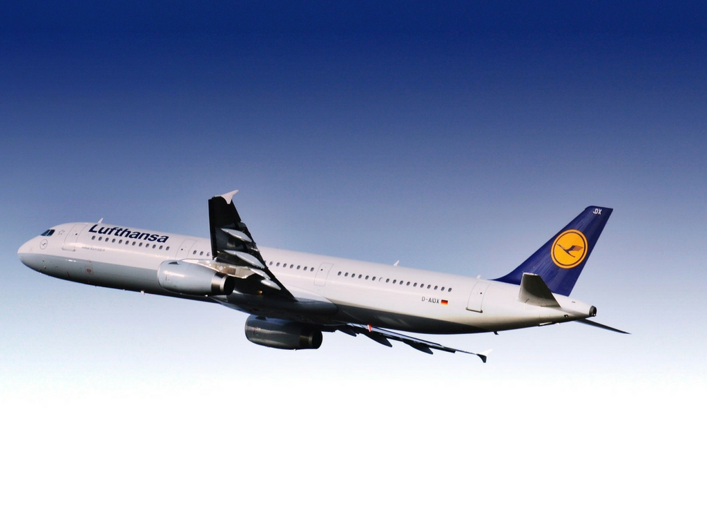 pets fly as manifest cargo on Lufthansa
