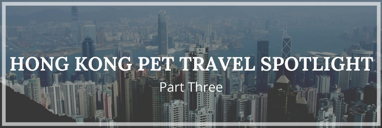 Hong Kong Pet Travel Spotlight Part Three