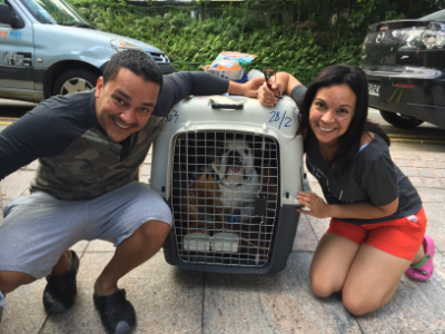Gabo moved to Singapore with PetRelocation
