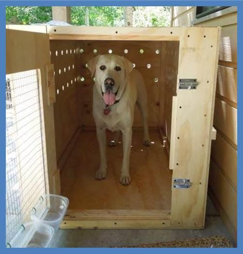 Fantastic Pet Travel Crates   PetRelocation LB11