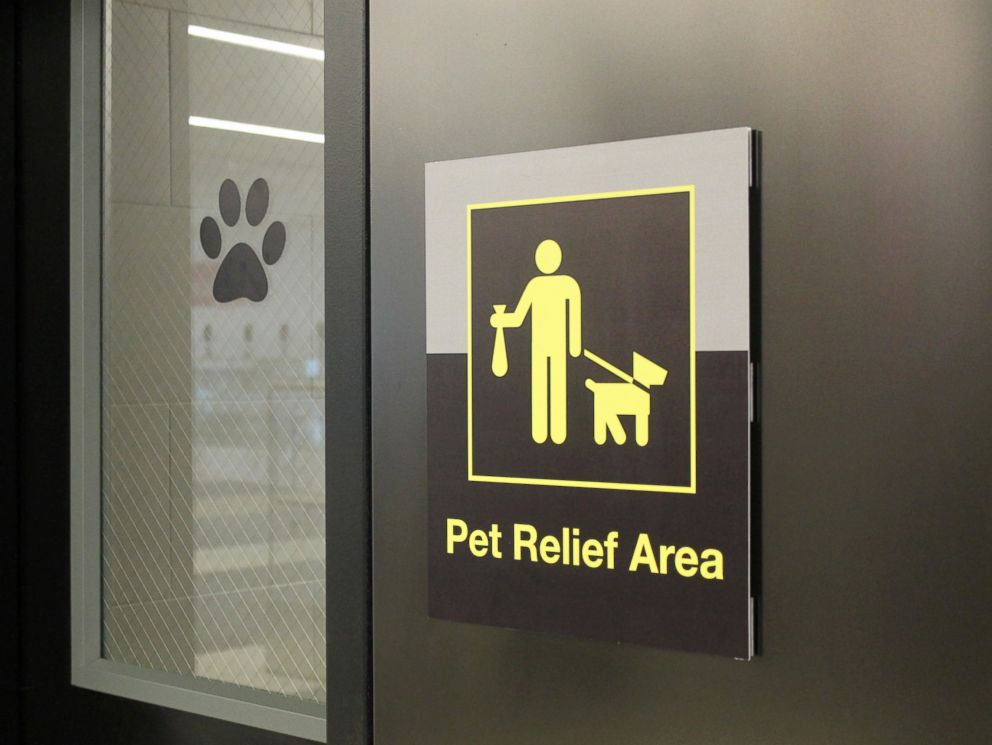 pet relief area