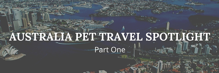 australia pet travel: quarantine spotligh