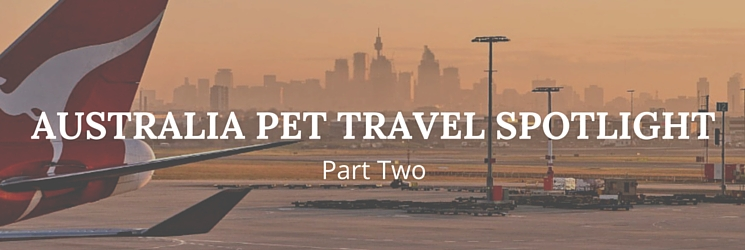 Australia pet travel spotlight part two