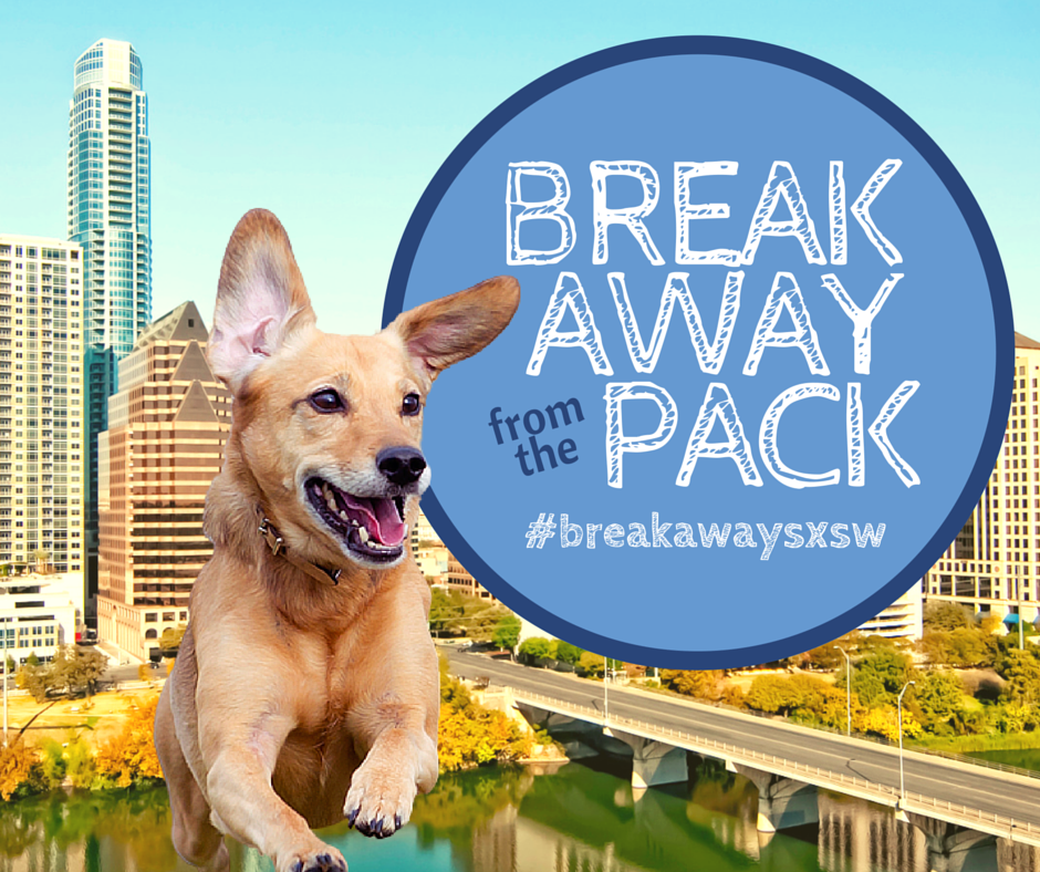 break away from the pack with petrelocation