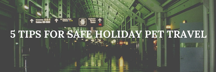 safe holiday pet travel tips