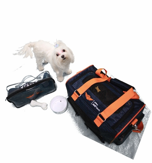 Jet Paws Dog and Carrier