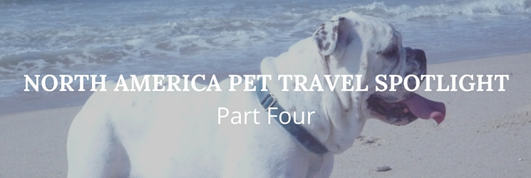 North America Pet Travel Spotlight Part Four