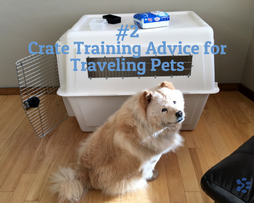pet travel crate training advice