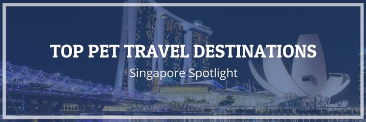 Singapore Pet Travel Spotlight