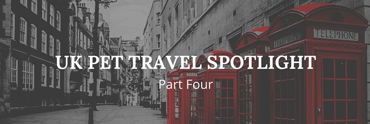 uk pet travel spotlight part four